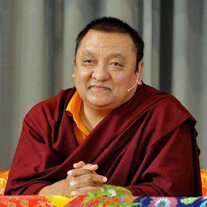 Shamarpa_Rinpoche.jpg